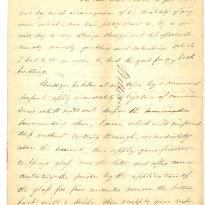 Letter to William Rodrigue from Aristide Rodrigue, 06/23/1833